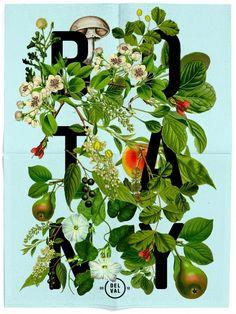 Botany Poster | Daniel Blackman