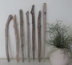 7 straight driftwood pieces for sea glass mobile // 7 driftwood branches for macrame by LonelyBeach on Etsy