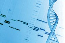 DNA - Testing for celiac disease and gluten syndrome is critical for the chronically ill