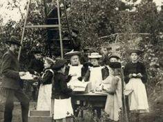 Fruktskörd i skolträdgården. Turinge, Södermanland, 1912. Fotograf: okänd — Nordiska Museet