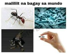 Memes Pinoy, Memes Tagalog, Tagalog Quotes, Qoutes, Filipino Funny, Filipino Memes, Hugot Lines Tagalog, Hugot Quotes, Relatable Tweets