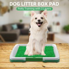Dog Litter Box Pad Potty Training Synthetic Grass Mesh Tray 3 Layer Pet Toilet for Puppy Cats Indoor Outdoor Use Cleaning Pad Training Pads, Dog Training, Toilet Training, Dog Litter Box, Puppy Potty Training Tips, Dog Toilet, Dog Potty, Go Outdoors, Dogs And Puppies