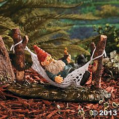 Gnome on a Hammock