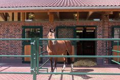 Dream Stables, Dream Barn, Horse Walker, Horse Barn Designs, Round Arch, Horse Stalls, Equestrian, Building, Heartland