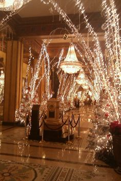 The lobby of many local hotels transforms into a Christmas/holiday wonderland every year!