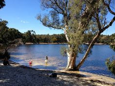 Reivew of Lake Leschenaultia for families in Perth Address: 6082 Rosedale Road, Chidlow Kids Picnic, Picnic Spot, Stuff To Do, Things To Do, School Holidays, Western Australia, Day Trip, Perth, Places To Go