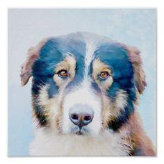 Caucasian Sheep Dog in Blue Poster  $10.45  by BamalamArt  - cyo customize personalize diy idea