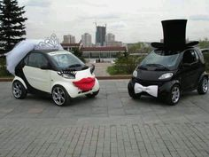 Smart Cars ~married
