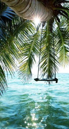 Meer, Palmen & eine Schaukel ins Glück Sea, palm trees & a swing to happiness Beautiful World, Beautiful Places, Beautiful Pictures, Amazing Places, Simply Beautiful, Wonderful Dream, Inspiring Pictures, Gorgeous Girl, Peaceful Places