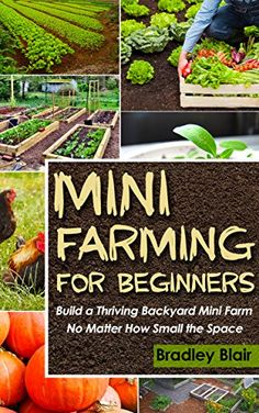 Mini Farming For Beginners: Build A Thriving Backyard Min...