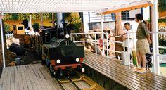 Tren Minero.