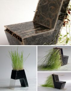 Kai Linke has taken grasses, bulbs, bamboo and other quick-growing plants, fashioned molds for their branches and root systems to populate and pushed their limits through a series of deformations.