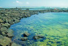 4) Kapoho Tide Pools, Big Island Hawaii