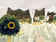 Eventlocation posted by Flasch City am Freizeit See on Flasch City am Freizeit See. Bankette, Table Decorations, Home Decor, Room Decor, Home Interior Design, Home Decoration, Interior Decorating, Center Pieces, Home Improvement