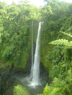 The force of gravity. Spectacular Fuipisia Waterfall on the island of Upolu--July 2010