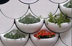 Planters incorporated into the scallop pattern add an organic element to a design that can seem too sterile.