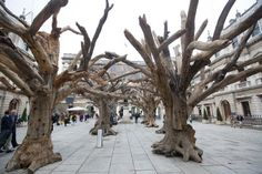 In China, trees are venerated as important counterparts to the dead on earth, the realm between heaven and the underworld.