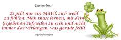 "Signiertext (53). Veganes Kochbuch ""ab und zu vegan-4-you"" (www.vegan-4-you.com)"