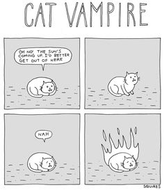Epic Pix » Like 9gag – just funny. » if-cats-were-vampires