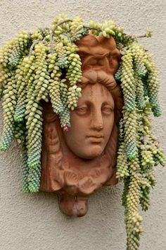 A living headdress of donkey's-tail sedum (S. morganianum), a succulent, drapes gracefully from the top of this wall-hung figural planter. | Photo: Mark Lohman | thisoldhouse.com
