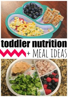 Toddler Nutrition and Meal Ideas
