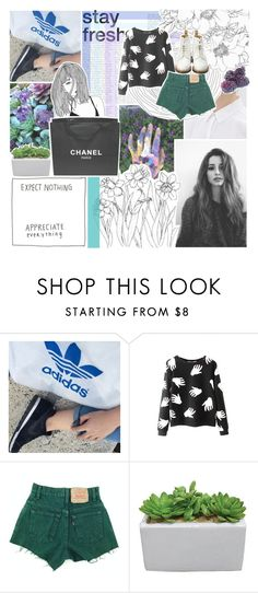 """""""certain things hurt and you're my only virtue"""" by thoughts-full-of-static ❤ liked on Polyvore featuring Chanel and Dr. Martens"""