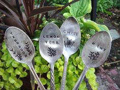 I just got home from a workshop at Collage, taught by the lovely artist Suki Allen, on how to make these cute little plant markers from spoons. They are pretty sweet and I can't wait to make… Garden Labels, Plant Labels, Plant Markers, Herb Pots, Garden Signs, Little Plants, Silver Spoons, Hanging Planters, Garden Projects