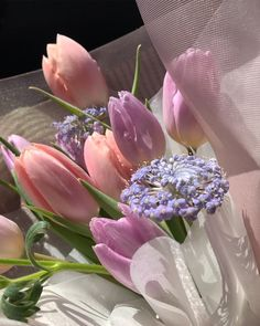 """➰ on Instagram: """"🌷🌷"""" Spring Aesthetic, Nature Aesthetic, Flower Aesthetic, Beige Aesthetic, My Flower, Beautiful Flowers, Look Wallpaper, Arte Floral, Aesthetic Pictures"""