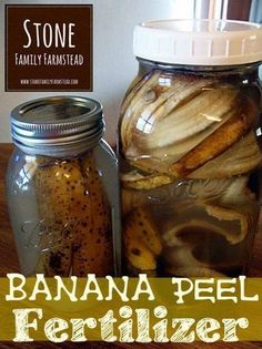 Banana peels are a fantastic source of potassium 42%. They do not contain nitrogen, which makes using them perfect for plants like tomatoes and peppers, which have a low nitrogen need. Banana peels also contain calcium, manganese, sodium, magnesium and sulphur. Soak 1 banana peel in a quart jar for a week. Pour banana-infused water around peppers and tomato plants. Honeydew and passionflower will do too. Throw the banana peel into the compost bin thereafter.
