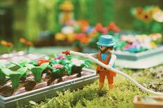 Playmobil greenhouse