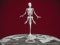 This is a digitally sculpted, 3D printed replica of a Mermaid Skeleton. It measures 1.76 inches long by 3.75 inches wide by 7 inches high. This piece is printed in a durable Nylon material with a slightly grainy texture. The base is removable.    The skeleton comes with a 2 page informational pamphlet about Mermaids, and a Certificate of authenticity, detailing the print number and the artists signature.    This model is made to order and may take up to 4 weeks to ship, although we will do…