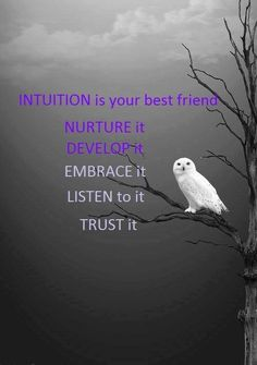 Intuition is your best friend. Nurture it, develop it, embrace it, listen to it, trust it Intuition, Namaste, Twin Flame Relationship, Trust Yourself, Life Lessons, Positive Quotes, Positive Affirmations, Just In Case, Wise Words