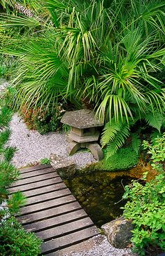 Lamorran House Gardens, Cornwall, UK | A coastal garden with some interesting Japanese garden features