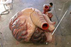 Un coeur de baleine
