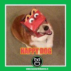 Non vorreste anche voi un #cane così... #felice ? Tagga i tuoi amici e #condividi #bastardidentro www.bastardidentro.it