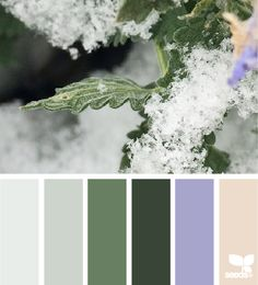 Winter Tones - http://design-seeds.com/index.php/home/entry/winter-tones7