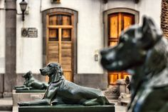 watch dogs by LICHTSIEB on 500px