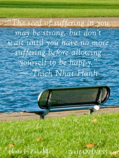 Suffering and happiness quotes by THich Nhat Hanh - The seed of suffering in you may be strong, but don't wait until you have no more suffering before allowing yourself to be happy.
