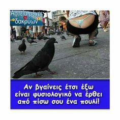 Panty Slip, Funny Greek Quotes, Color Psychology, Funny Photos, Lol, Humor, Pets, Outdoors, Cool Jokes