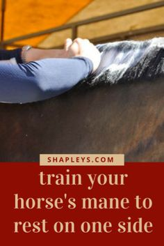 Shapley's Superior Equine Grooming Products :: Mane Taming