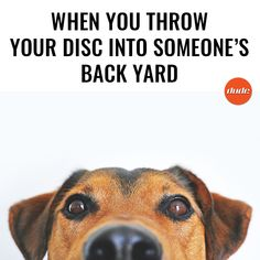 That look of longing when you pop your head over the fence hoping that your disc is safe and sound. #discgolf #dudeclothing #practice #neighbours #happiness #longing #happy #hope #firstworldproblems #instagood#me #photooftheday#instamood  #tweegram #picoftheday #instadaily #summer #instagramhub  #bestoftheday #happy #followme #discgolfaccessories #frisbee #sportsaustralia #gooddeals #sportsclothing #sportsapparel #sports #sportsfashion #discgolfapparel #sportsaustralia #discgolfnearme