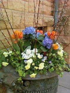 Wonderful spring container garden
