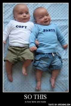 How twins are made!