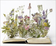 Coco 的美術館: 割書藝術--Su Blackwell is an artist working predominantly within the realm of paper.