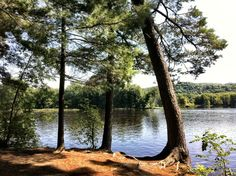 William O'Brien State Park in Marine on Saint Croix, MN (camper cabins available)