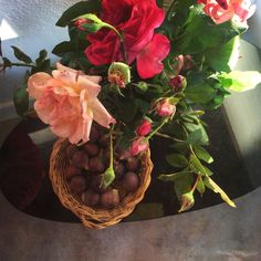 roses et figues,bassin d'Arcachon, ©Corinne Granger