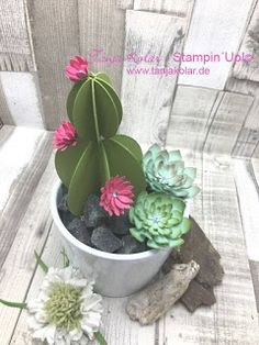 paper crafting ... paper succulent garden ... no watering needed ... luv the look ...