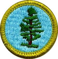 boy scout merit badges list - Google Search
