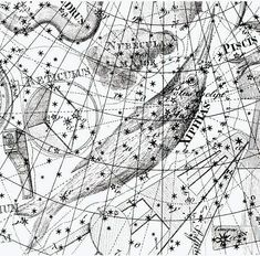 "Dorado shown in the 1801 Uranographia of Johann Bode under the name of Xiphias, the swordfish. Nubecula Major, above it, is better known as the Large Magellanic Cloud. Mona Evans, ""Exotic Creatures of the Southern Sky"" http://www.bellaonline.com/articles/art301200.asp"