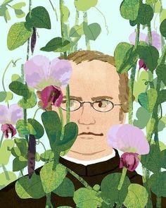 Mendel メンデル #mendel #tree #plants #pea #snowpea #green #flower #life #fun #illustrator #illustration #love #light #えんどう豆 #イラスト